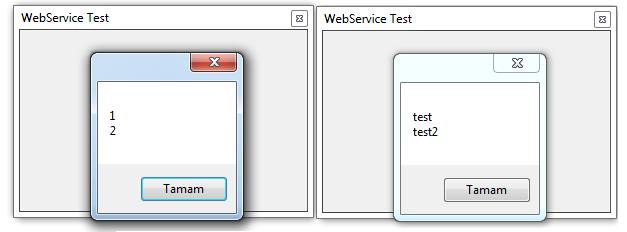 web servis 6
